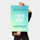 one week pass to art of fitness laguna beach gym
