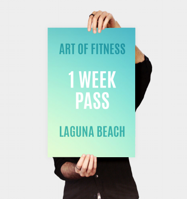 one week pass to art of fitness laguna beach gym - classes not included
