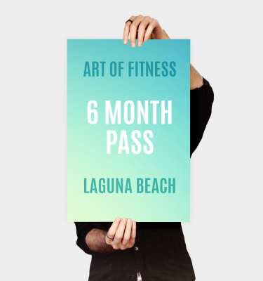 6 month pass to art of fitness laguna beach gym