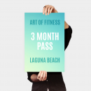 3 month pass to art of fitness laguna beach gym