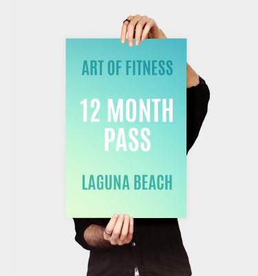 12 month pass to art of fitness laguna beach gym