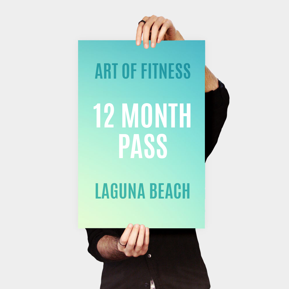 12 month pass to art of fitness laguna beach gym